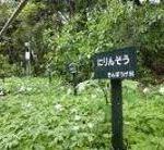 路傍植物園の表示板