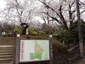 2kitazawasalon