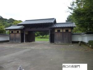 64-5 shizen