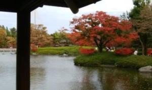 <日本庭園の紅葉の美しさに見惚れる>